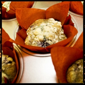 Flour Head Bakery Blueberry Muffins
